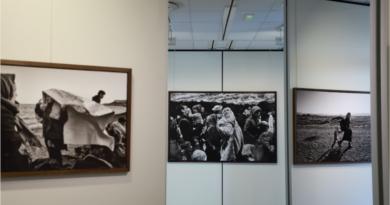 Displaced femme en exil - par Marie Dorigny - LC