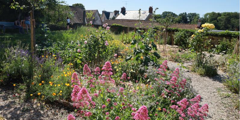 Le jardin médiéval mélange plantes potagères et fleurs. Photo LC-M'Essonne
