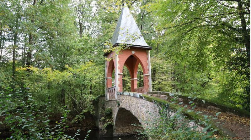 Réserve naturelle des etangs de Bonnelles LC M'Essonne(12)
