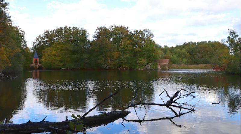 Vue sur l'étang des trois ducs. © M'Essonne
