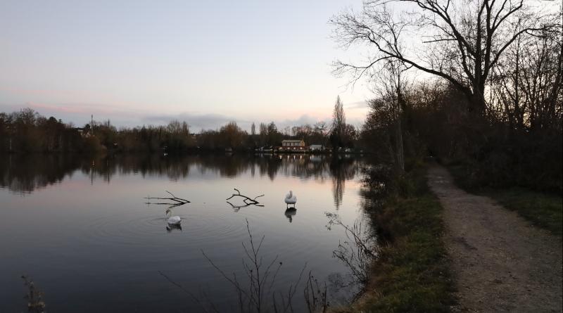 Les étangs de Vert-le-Petit du côté de Ballancourt. Photo LC-M'Essonne.