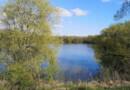 Bassin de Trévoix Ollainville photo LC-MEssonne