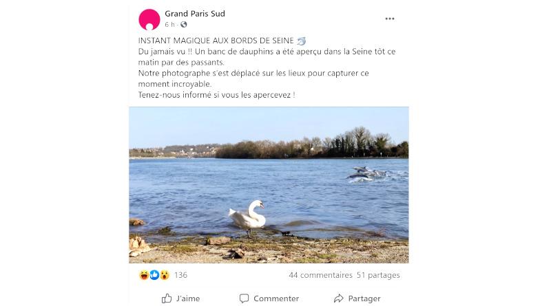 Poisson d'avril 2021 en Essonne : des dauphins dans la Seine.